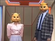 Super Password Cat Masks
