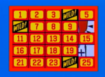 Three Wild Cards