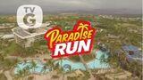 Paradise Run alt Background