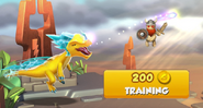 Dragon Training