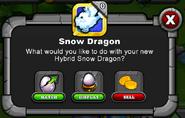 DragonVale4