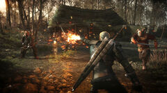 The Witcher 3 Wild Hunt-Geralt torching his enemies 1407869453