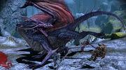 DAO High Dragon Fight