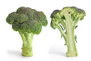 Broccoli and cross