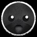 Black Cat Skin