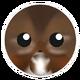 Dark Brown Chipmunk