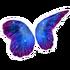 Butterfly Galaxy Wings