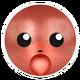 Red Chipmunk