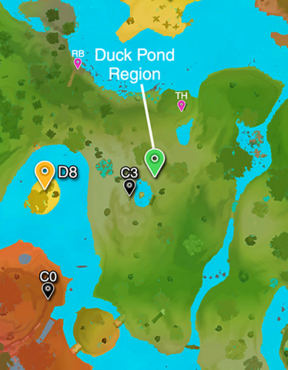 Duck Pond Region