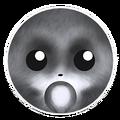 Raccoon Dark