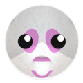 Pink Panda Bear