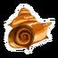 Desert Snail