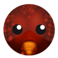 Red Gold Dragon Skin