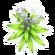 Tall White Flower