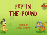 Pup in the Pound