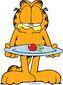 Garfield diet