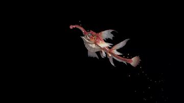 Small Makai Dragons