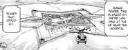Alnus base