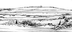Alnus hill