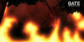Schwarz dragon