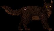 Estrella de Tigre.guerrero