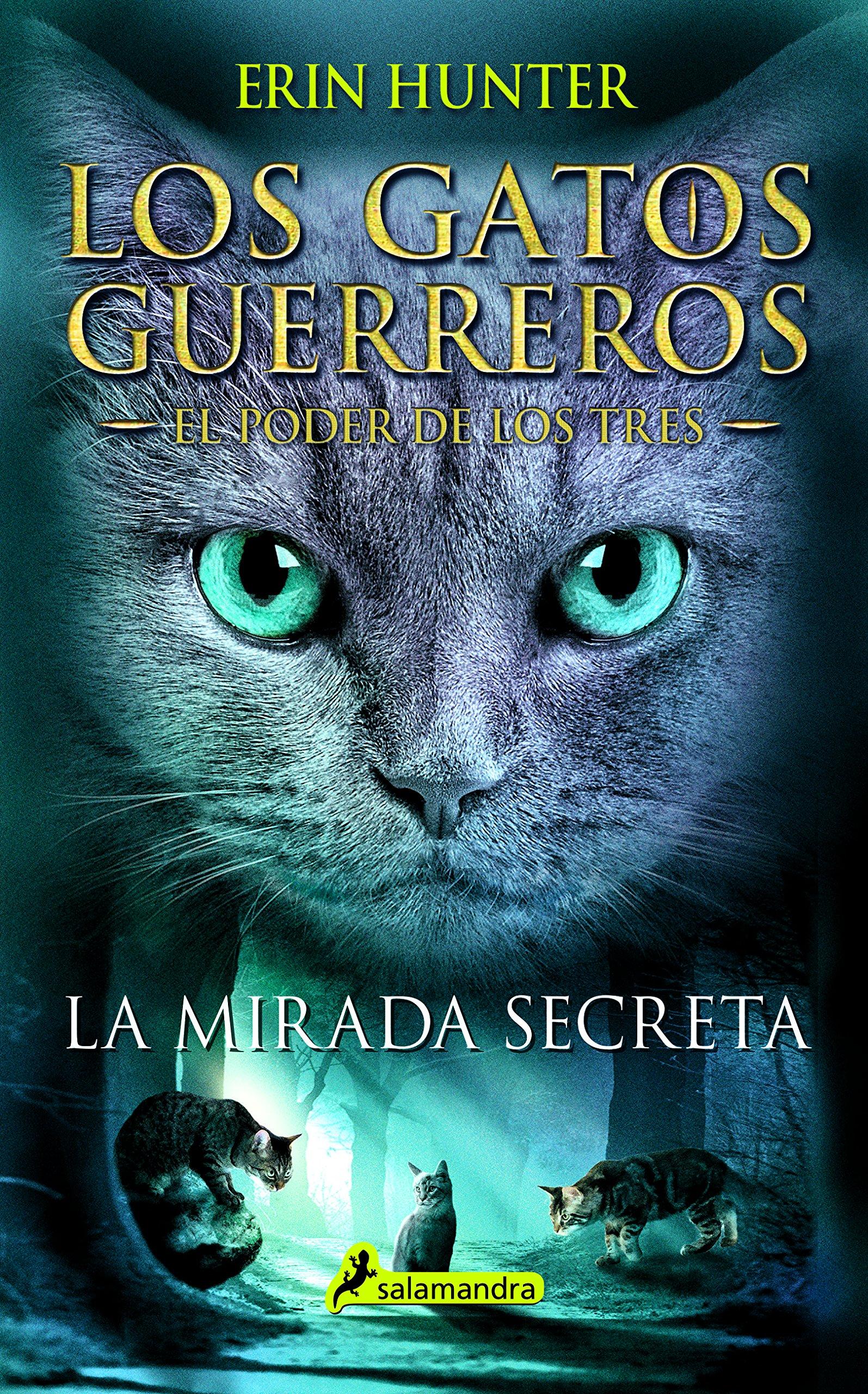 La mirada secreta/General | Los Gatos Guerreros Wiki