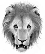 Logo-lionclan