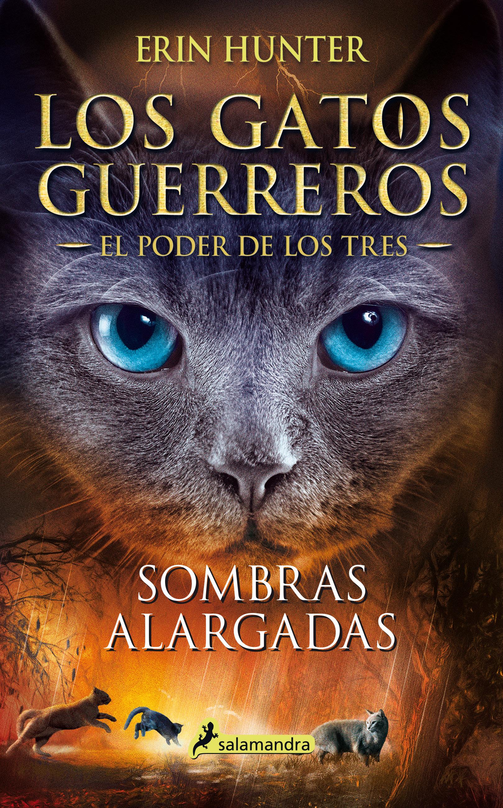 Sombras alargadas/General   Los Gatos Guerreros Wiki   Fandom