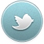 File:Twitter icon active.png