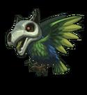 Shattuck Bird