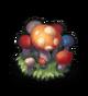Грибной сад