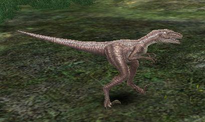 File:Hill Velociraptor (lvl 89).jpg