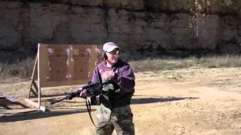 Long Gun to Sidearm Transitions on the Move
