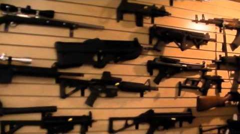 A wall of guns