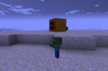 Thumbnail for version as of 21:46, June 14, 2014