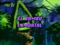1996 Episode 10 Title Screen Mex Dub