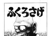 Fukuro-Sage (story)