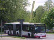 Gelsenkirchen bus