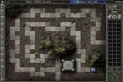 Field C11 Map