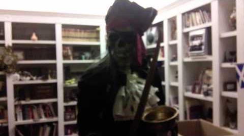 Gemmy Life Size Dead Eye Drake the Pirate Skeleton