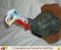Lucky tom the talkin' turkey