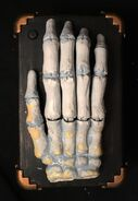 GEMMY PROTOTYPE SKELETON MONSTER HAND ON COFFIN BATTERY OPERATED AUTOMATON 2015