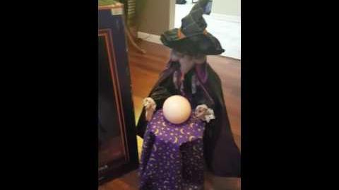 "Original Gemmy 24"" Fortune Teller Witch Lighted Talking"