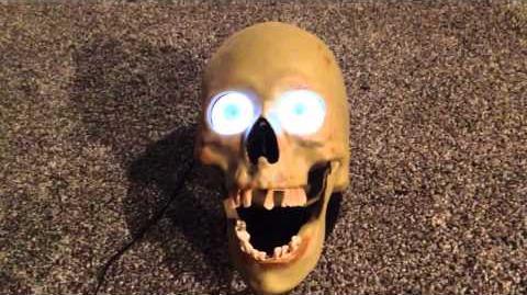 Gemmy 2010 animated Scary skull