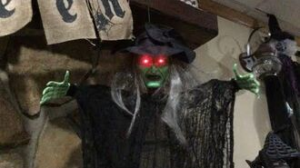 Gemmy Halloween animated Shaking Spirits Witch