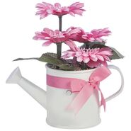Dancing Flowers - Gerbera Daisy 3