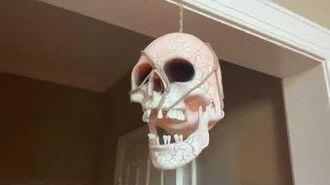 Gemmy Glowing Skull Lantern