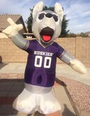 University AIRBLOWN Collection-University Of Washington Huskies 8 Foot Tall