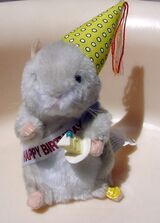 Birthday Boy (Hamster)