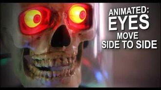 HL Animated Skull in Cloche
